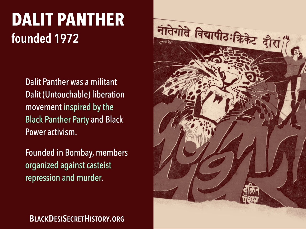DALIT PANTHER,